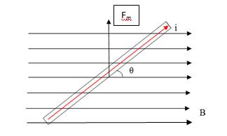 741b392cffa A força magnética que age no trecho do condutor inserido no campo magnética  (B) depende das seguintes variáveis